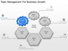 use Team Management For Business Growth Powerpoint Template