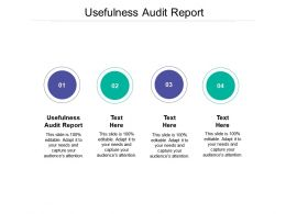 Usefulness Audit Report Ppt Powerpoint Presentation Backgrounds Cpb