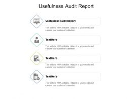 Usefulness Audit Report Ppt Powerpoint Presentation Gallery Example Introduction Cpb