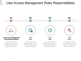 User Access Management Roles Responsibilities Ppt Powerpoint Presentation Professional File Cpb