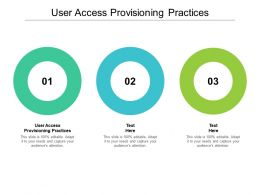 User Access Provisioning Practices Ppt Powerpoint Presentation Slides Visuals Cpb