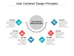 User Centered Design Principles Ppt Powerpoint Presentation Gallery Example File Cpb