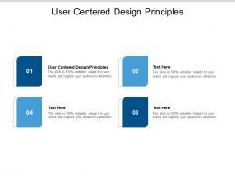 User Centered Design Principles Ppt Powerpoint Presentation Ideas Brochure Cpb