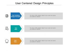 User Centered Design Principles Ppt Powerpoint Presentation Professional Elements Cpb