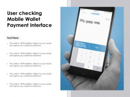 User Checking Mobile Wallet Payment Interface