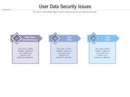 User Data Security Issues Ppt Powerpoint Presentation File Files Cpb