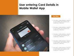 User Entering Card Details In Mobile Wallet App
