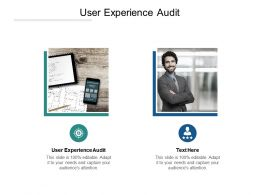User Experience Audit Ppt Powerpoint Presentation Show Cpb