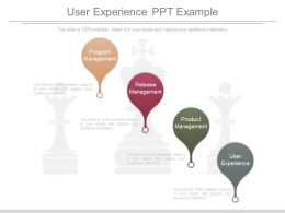 User Experience Ppt Example