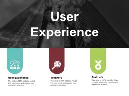User Experience Ppt Powerpoint Presentation Infographic Template Example Introduction Cpb