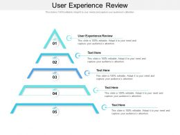 User Experience Review Ppt Powerpoint Presentation Layouts Design Ideas Cpb