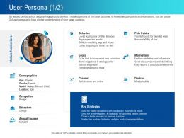 User Persona L2258 Ppt Powerpoint Presentation Icon Example File