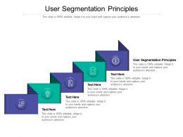User Segmentation Principles Ppt Powerpoint Presentation Portfolio Graphic Tips Cpb