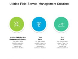 Utilities Field Service Management Solutions Ppt Powerpoint Presentation Ideas Designs Cpb