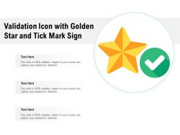 Validation Icon With Golden Star And Tick Mark Sign