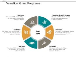 Valuation Grant Programs Ppt Powerpoint Presentation Icon Vector Cpb