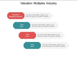 Valuation Multiples Industry Ppt Powerpoint Presentation Layouts Ideas Cpb