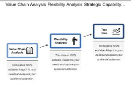 Value Chain Analysis Flexibility Analysis Strategic Capability Analysis