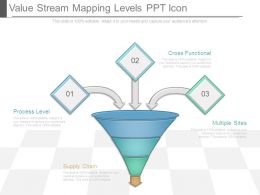 Value Stream Mapping Levels Ppt Icon