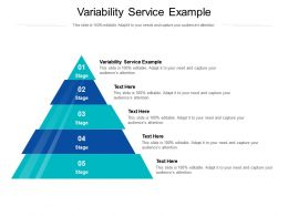Variability Service Example Ppt Powerpoint Presentation Infographic Template Good Cpb