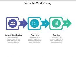 Variable Cost Pricing Ppt Powerpoint Presentation Slides Introduction Cpb