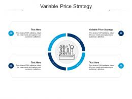 Variable Price Strategy Ppt Powerpoint Presentation Infographics Example Cpb