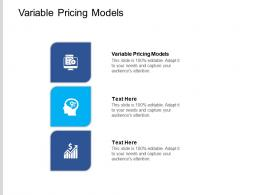 Variable Pricing Models Ppt Powerpoint Presentation Visual Aids Icon Cpb