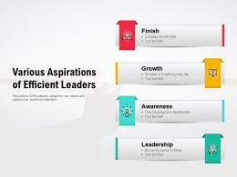 Various Aspirations Of Efficient Leaders