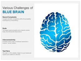 Various Challenges Of Blue Brain