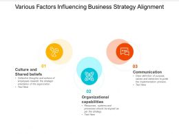 Various Factors Influencing Business Strategy Alignment