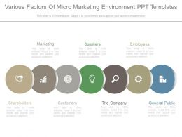 Various Factors Of Micro Marketing Environment Ppt Templates