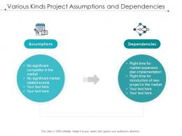 Various Kinds Project Assumptions And Dependencies
