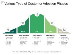 Various Type Of Customer Adoption Phases