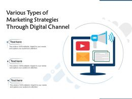 Various Types Of Marketing Strategies Through Digital Channel