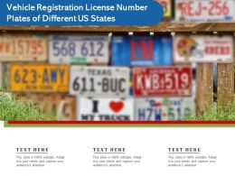 Vehicle Registration License Number Plates Of Different Us States