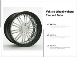 Vehicle Wheel Without Tire And Tube