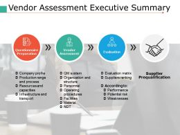 Vendor Assessment Executive Summary Ppt Portfolio Backgrounds