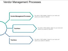 Vendor Management Processes Ppt Powerpoint Presentation Gallery Skills Cpb