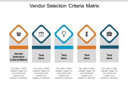 Vendor Selection Criteria Matrix Ppt Powerpoint Presentation File Templates Cpb