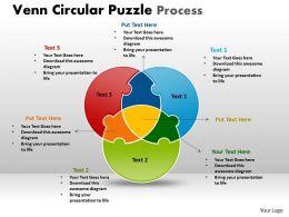 Venn Circular Puzzle Process 16