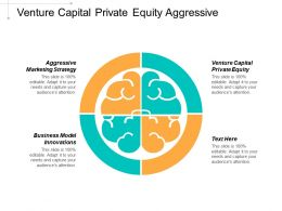 Venture Capital Private Equity Aggressive Marketing Strategy Business Model Innovations Cpb