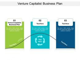 Venture Capitalist Business Plan Ppt Powerpoint Presentation Show Cpb