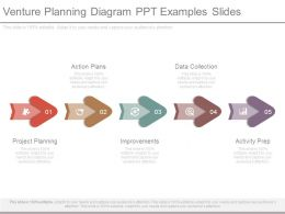 Venture Planning Diagram Ppt Examples Slides
