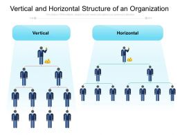 Vertical And Horizontal Structure Of An Organization