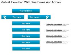 Vertical Flowchart With Blue Boxes And Arrows