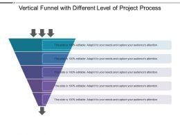 Vertical Funnel With Different Level Of Project Process