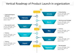 Vertical Roadmap Of Product Launch In Organization