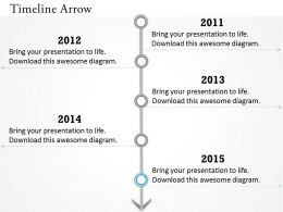 Vertical Timeline Roadmap Diagram 0314