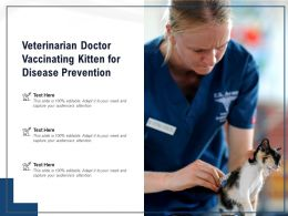 Veterinarian Doctor Vaccinating Kitten For Disease Prevention