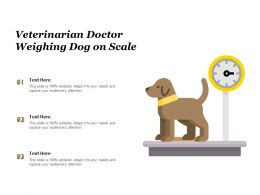 Veterinarian Doctor Weighing Dog On Scale